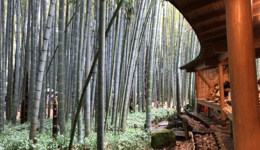 報国寺/鎌倉の抹茶や拝観料について!御朱印の種類と値段まとめ